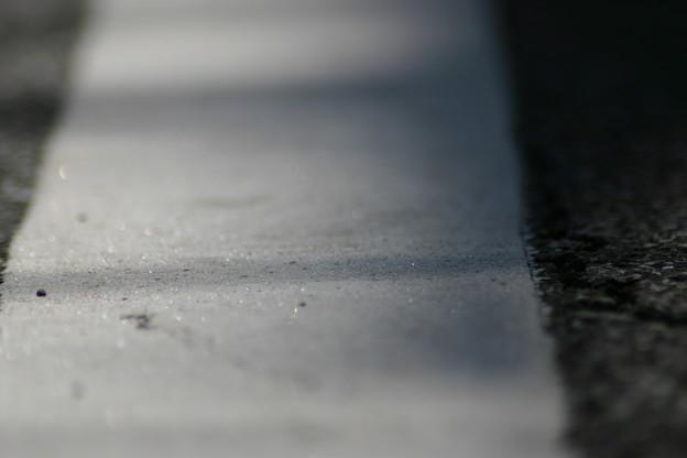 道路 白線