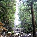 写真: 飛瀧神社(那智の滝)