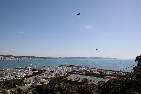 江の島091011_07