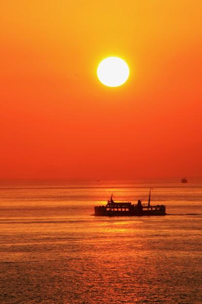 写真: 夕日を見つめて‥♪