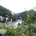写真: 長命館公園11