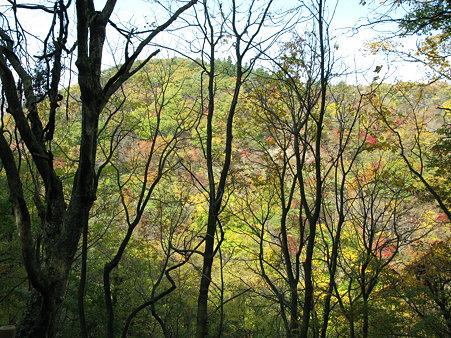 鳴子峡の秋につつまれて 1〜その向こうにいるよ