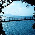 写真: 門脇吊橋と城ヶ崎海岸と大島
