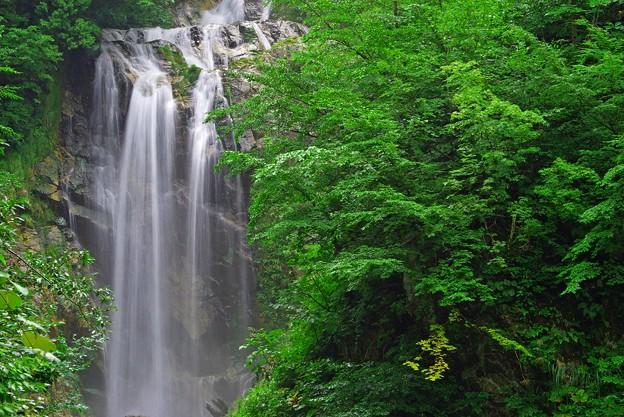 天生中滝3