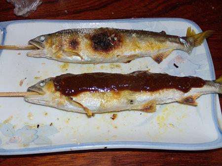 塩焼きアユと魚田