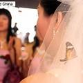 Photos: 男の結婚難に乗じた結婚詐欺増加、結納は収入の数年分