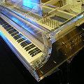 Photos: DSCN200909_YOSHIKI CRYSTAL PIANO(6)