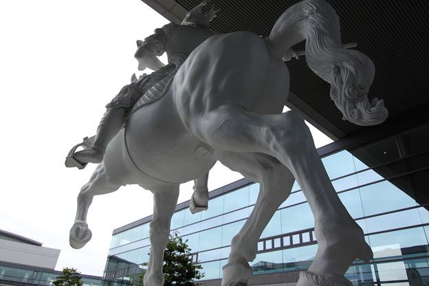 白馬の騎士