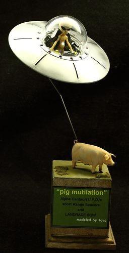 pig mutilation (1)