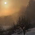 深霧の夜明け~木