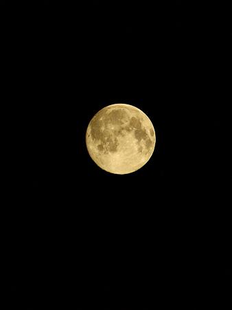 中秋の名月(1) 22:55