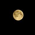 写真: 中秋の名月(1) 22:55
