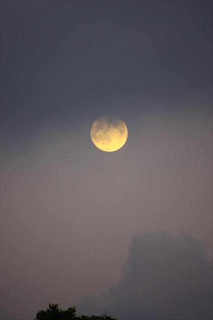 写真: 中秋の名月 (17:38)