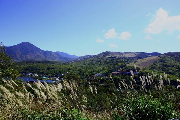 車山高原から 白樺湖とススキ (左は蓼科山)