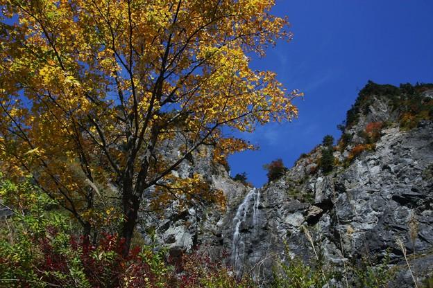 ふくべの大滝と紅葉  白山スーパー林道