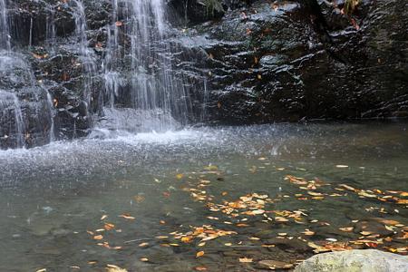 龍双ヶ滝  滝壺と落ち葉