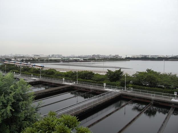 写真: R0020107 - 森ヶ崎水再生センター