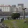 写真: R0019043 - 大井埠頭中央海浜公園(1)