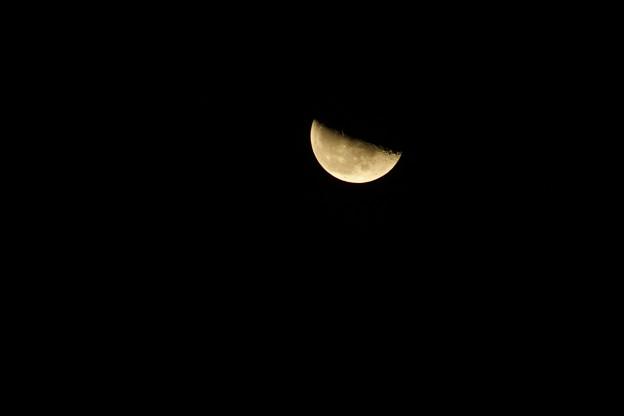 二十三日月は、下弦の月