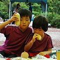 Photos: 雲見オートキャンプ場089