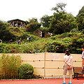 Photos: 雲見オートキャンプ場118