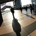 写真: shadow