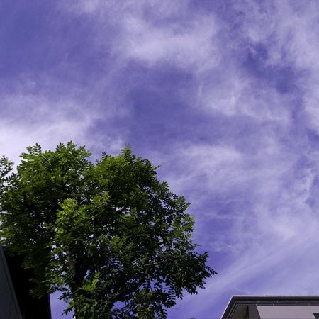 2009-09-18の空1