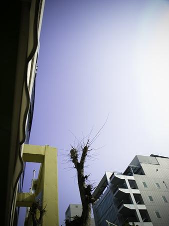 2011-01-24の空
