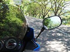 奥琵琶湖 木漏れ日の中の快走路