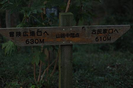 20091012_170058