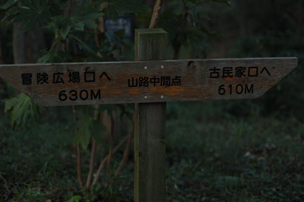 写真: 20091012_170058