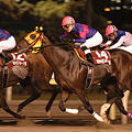 Photos: 09_東京中日スポーツ賞
