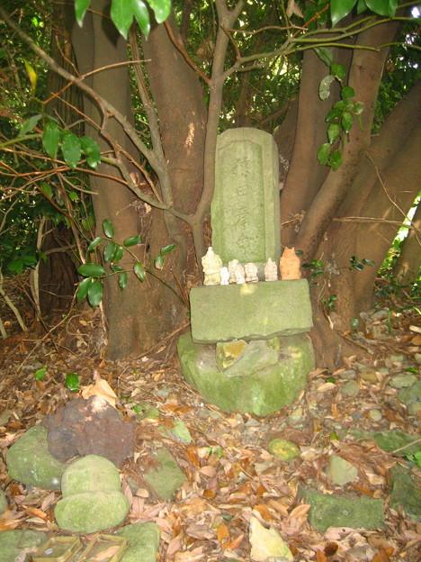 石段のわきにひっそりと小さな石碑…