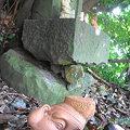 Photos: 猿田彦の命…。