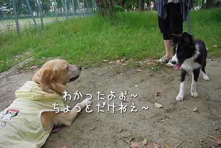 s-myu2009_0628(042)