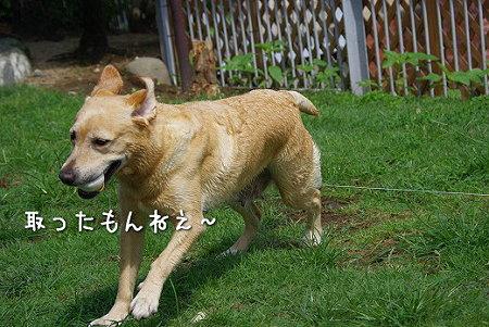 s-myu2009_0702(101)