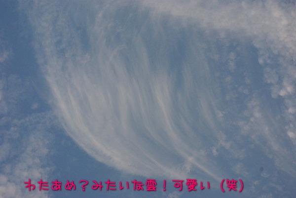 s-myu2009_0823(032)