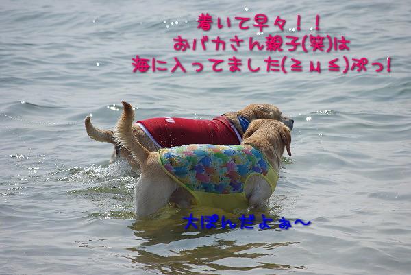 s-myu2009_0829(041)