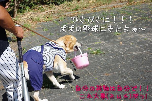 s-myu2009_0906(041)