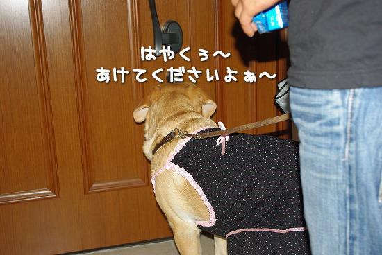 s-myu2009_0913(026)