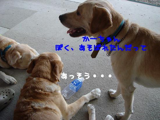 s-myu2009_0927(012)