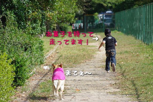 s-myu2009_1018(070)