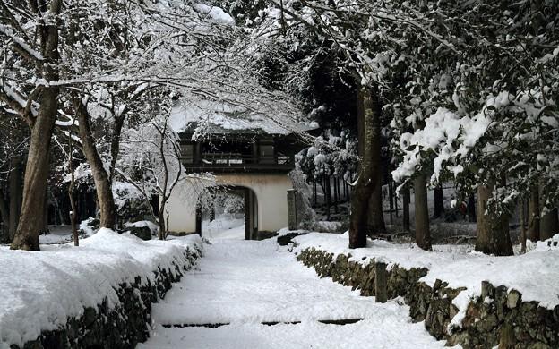写真: 古知谷阿弥陀寺05
