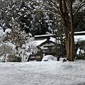 写真: 古知谷阿弥陀寺02