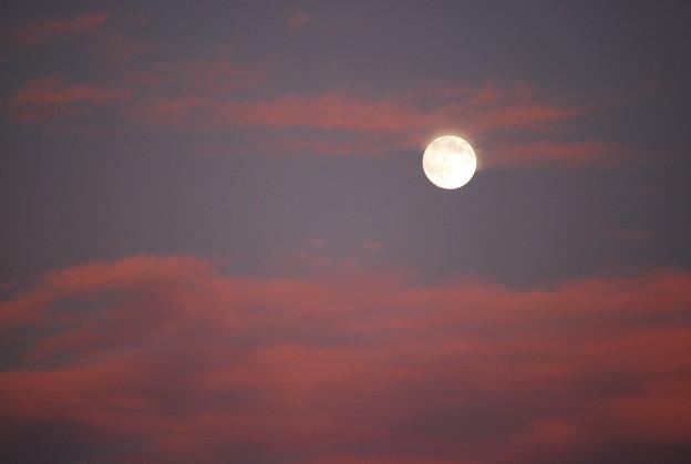 Photos: Artemis 11-1-09
