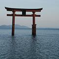 Photos: 白髭神社 湖に浮かぶ鳥居_03