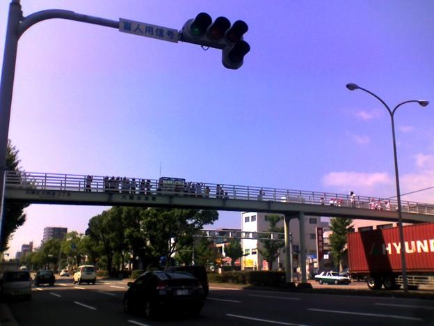 歩道橋の上の子ども