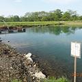 Photos: なら山沼漁場