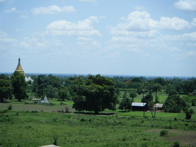 斜塔からの景色