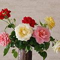 Photos: 10月のミニバラ切花